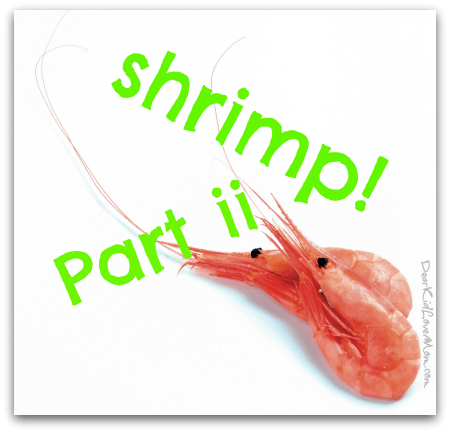 Shrimp Part ii -- What you don't know (but probably should ) about shrimp. DearKidLoveMom.com