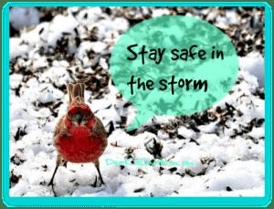 Stay safe in the storm. DearKidLoveMom.com