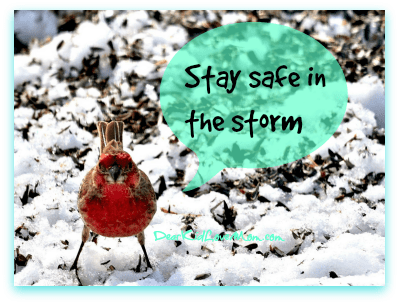 Stay safe in the storm. DearKidLoveMom.com