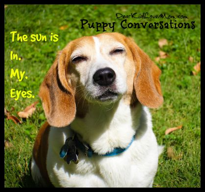 The Sun is In. My. Eyes. Puppy Conversations #PuppyConversations DearKidLoveMom.com