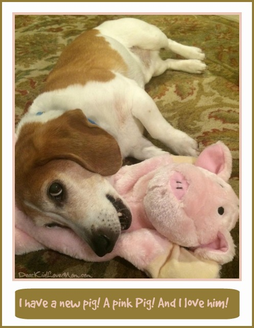 I have a new pink pig and I LOVE him! DearKidLoveMom.com/PuppyConversations