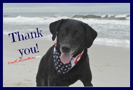 Veterans and More | Thank You to All Who Keep Us Safe DearKidLoveMom.com