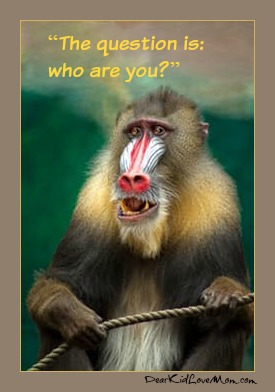 """The question is: who are you?"" Monkey Rafiki Lion King. Quit Monkeying Around. International Monkey Day. DearKidLoveMom.com"