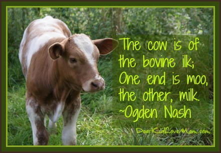 The cow is of the bovine ilk; One end is moo, the other, milk. ~Ogden NashAbout 600 cows give their hides to make a season's worth of NFL footballs. DearKidLoveMom.com