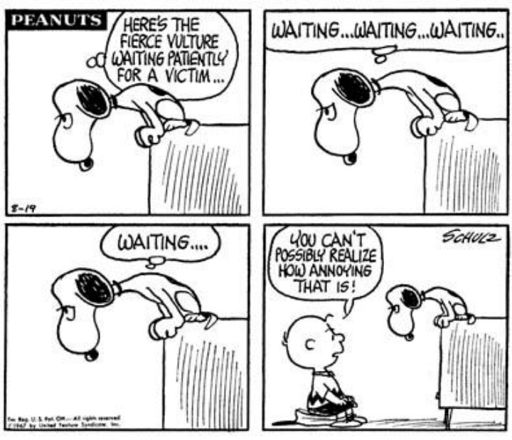 Snoopy, the world's most famous vulture.