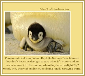 Penguins do not worry about Daylight Savings Time because they don't have any daylight to save when it's winter and no reason to save it in the summer when they have daylight 24/7. Mostly they worry about lunch, not being lunch, & staying warm. DearKidLoveMom.com