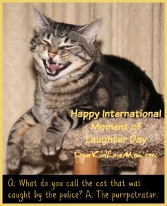 Happy International Moment of Laughter Day DearKidLoveMom.com
