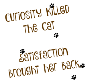 Curiosity Killed the cat. Satisfaction brought her back. DearKidLoveMom.com