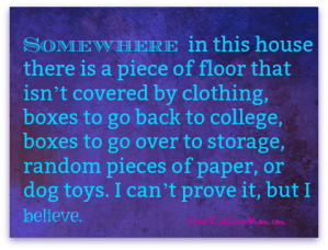 and somewhere in this house there is a piece of floor that isn't covered by clothing, boxes to go back to college, boxes to go over to storage, random pieces of paper, or dog toys. I'm convinced there is a piece of floor. I can't prove it, but I believe. DearKidLoveMom.com