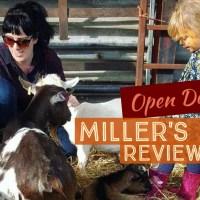 Miller's Ark Autumn Open Day