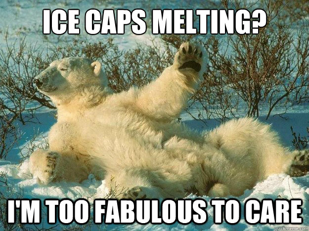 fabulous polar bear meme