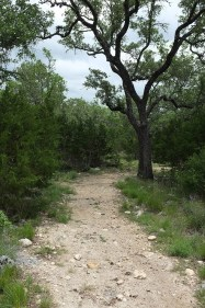 Loop 3 Trail near the bluff
