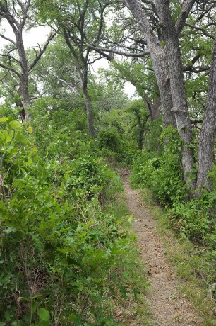 The path along the Creek Trail at Doeskin Ranch