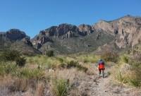 Trail winding through desert grassland