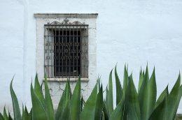 Window on the Mission Espiritu Santo