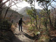 Hiking the McKittrick Canyon Trail