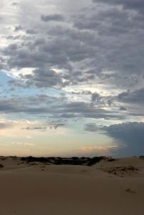 Desert in the morning light