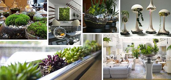 Vom Indoor Garten Zur Wohlfhloase Wie Die Wohnung Begrnen
