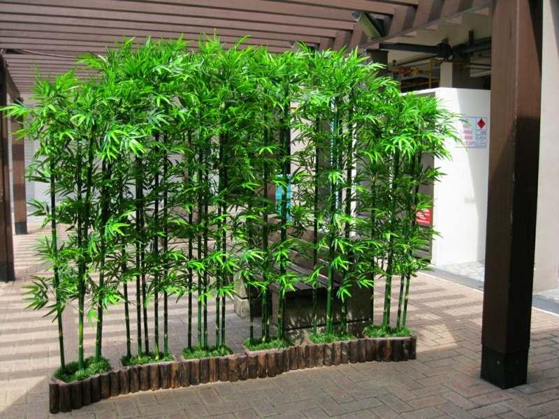 Bambus Im Garten DIY Sichtschutz Fr Die Terrasse
