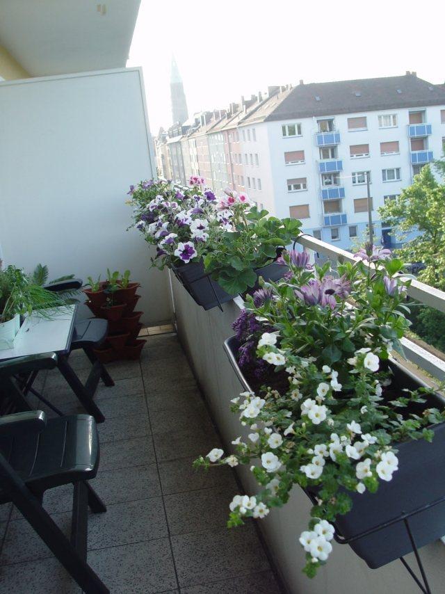 Cest Le Moment De Planterquelles Fleurs Pour Jardinires