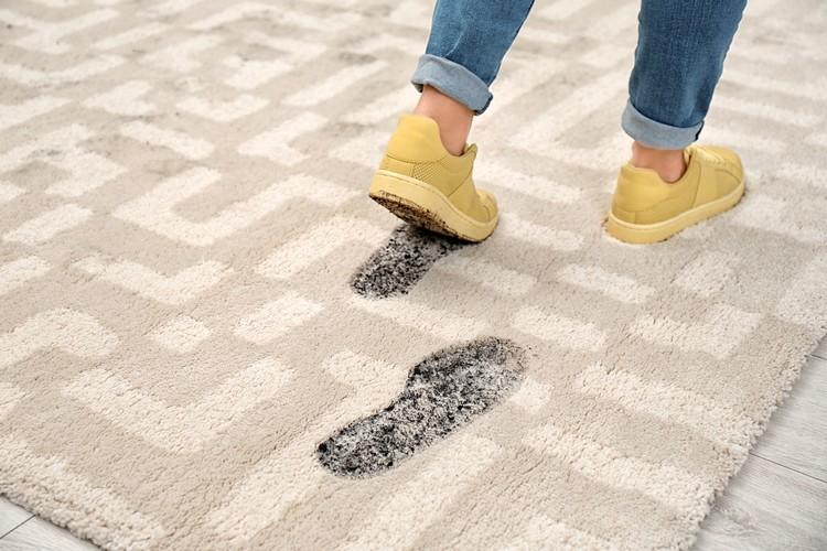 nettoyage tapis