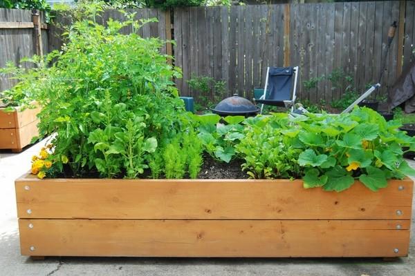 15 planter garden ideas to decorate
