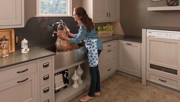 dog washing station ideas a practical