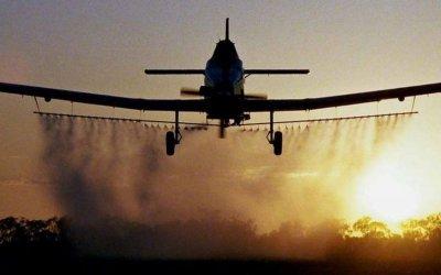 Începe tratamentul avio împotriva insectelor de disconfort