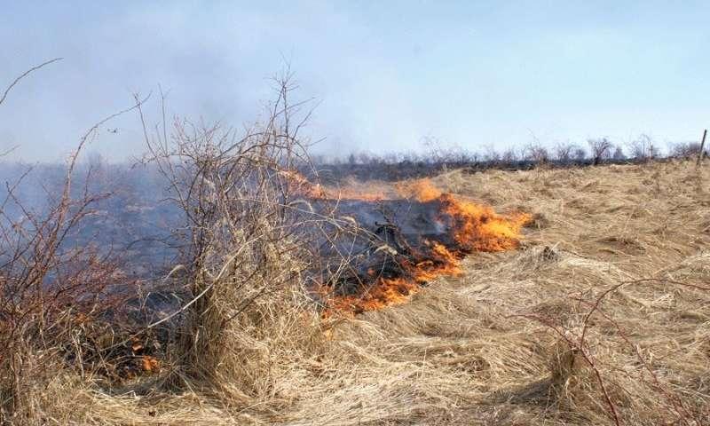 Incendierea terenurilor poate duce la reducerea subvenţiilor sau anularea lor