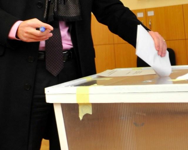 poza generica votare