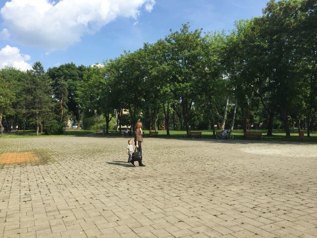 viitor patinoar parcul copiilor3
