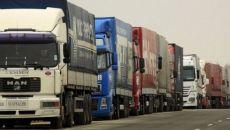 Sute de tone de fructe și legume au fost neutralizate de statul român