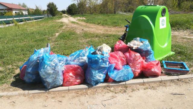 Sute de saci de gunoaie au fost strânse în Dumbrăvița curată