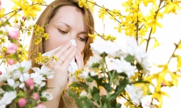 Alergii la polen