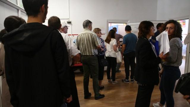 vot timisoara