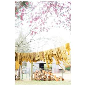 spring decor tours
