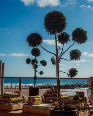 Cinema Paradiso - Haifa - North Beach Restaurant - Not Kosher - View