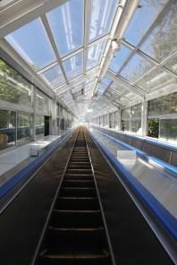 エスかヒル鳴門的觀光扶手電梯