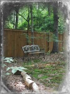 Bench in woods 010 OTN