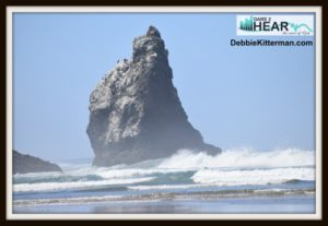 oceanrock
