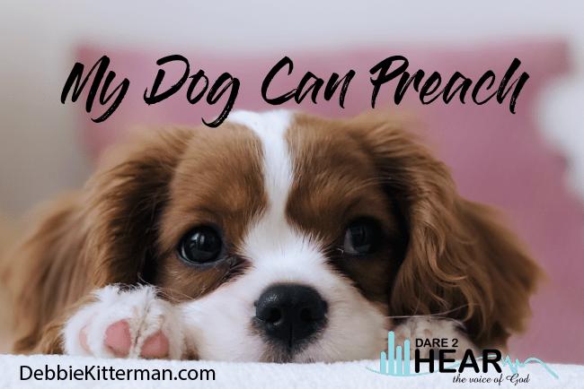 My Dog Can Preach + Tune In Thursday #225