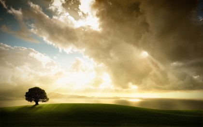 meadow-hill-tree-clouds-sun-rays-nature-420x262[1]