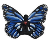 butterfly image - Home