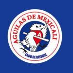Águilas de Mexicali apoyan el 50 Aniversario de la Liga Félix Arce