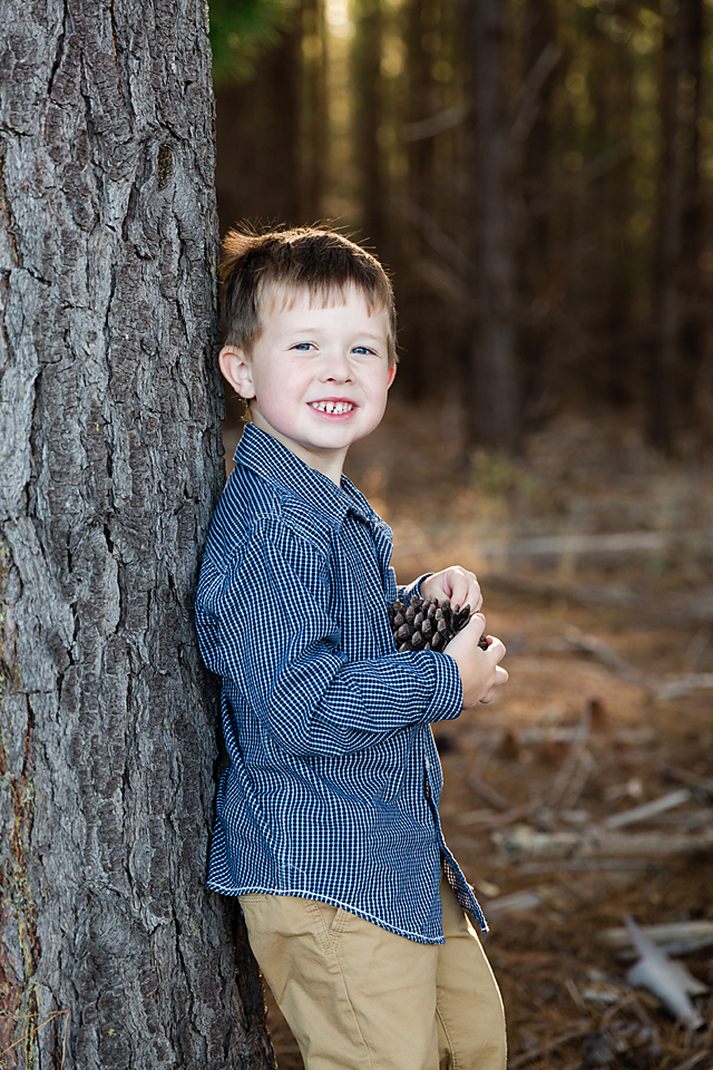 boy leaning on a tree holding a pine cone in the forest for a family photo session