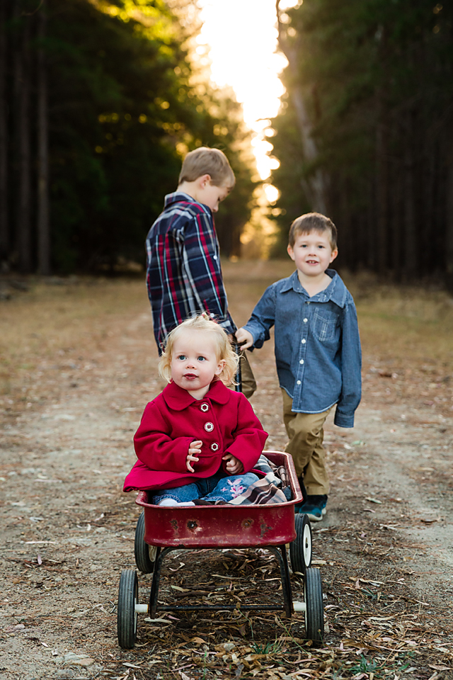 toddlers in a red wagon being pulled by her brothers in the forest for a family photo session