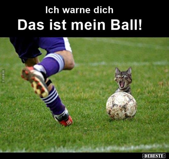 Fussball Spruche Besten Fussballspruche In Der Ubersicht