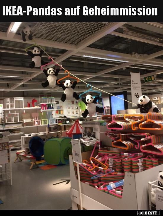 Amazon It Mein Leben Mit Anna Von Ikea Humor Kowa Thomas Libri In Altre Lingue