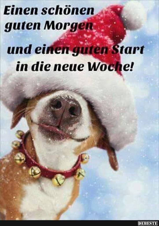 Guten Morgen Lustige Und Niedliche Bilder Zeit Facebook