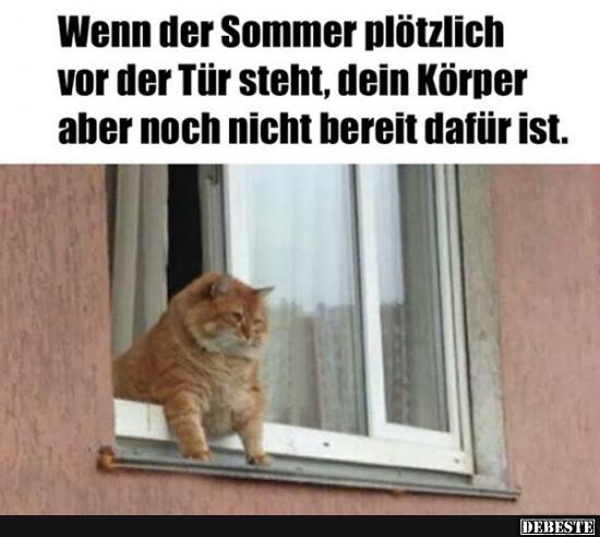 Lustige Sommer Bilder Furs Handy Und Whatsapp